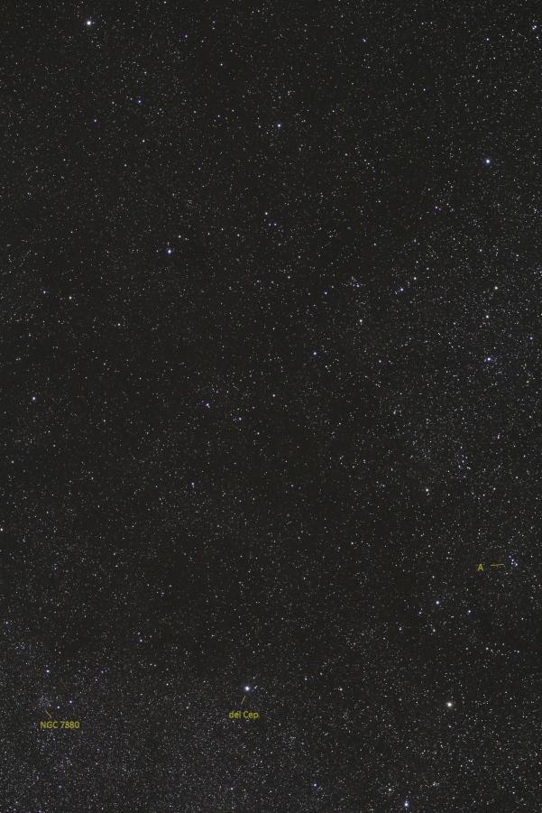 ca5993